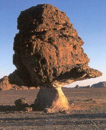 Janzour.com / Libyan Nature Pictures 5
