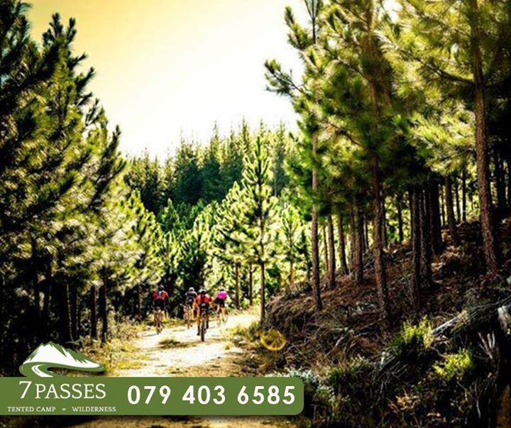 What more can you ask then having the beauty of Mother Nature surrounding you, while exploring on various #mountainbiking trails near #7Passes.