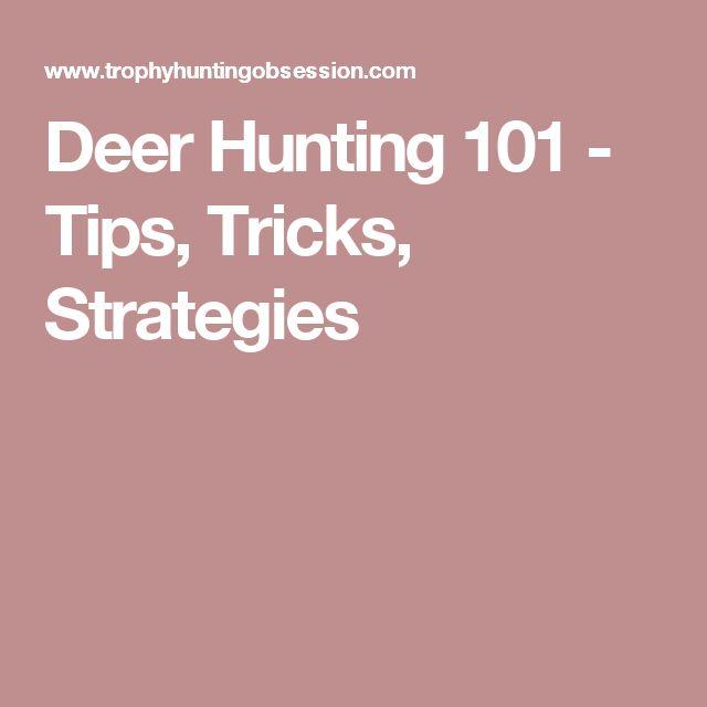 Deer Hunting 101 - Tips, Tricks, Strategies