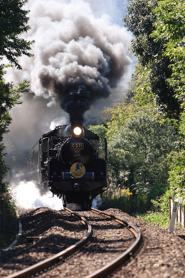 Train Trip Across Usa: 17 Best Images About Railroad History On Pinterest