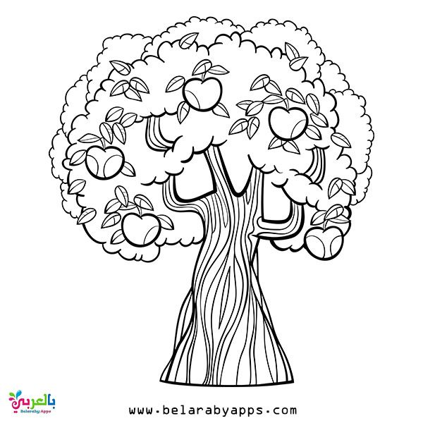 Free Spring Coloring Pages For Toddlers Belarabyapps In 2020 Apple Coloring Pages Tree Coloring Page Coloring Pages