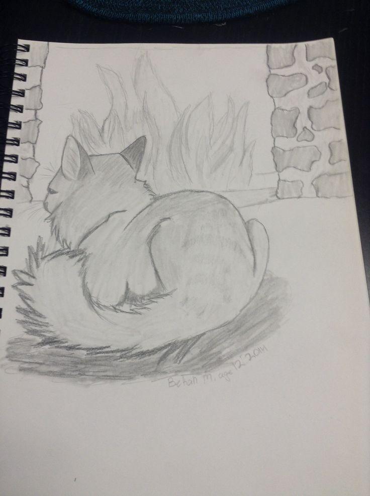 Fluffy cat by Bekah m age 12