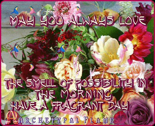 may you always love the smell of possibility in the morning have a fragrant day Love and Light Agape ke Fos Είθε αγαπάς για πάντα το άρωμα της δυνατότητας το πρωινό Να έχεις μια αρωματική μέρα Αγάπη και Φως les deseo un dia fragante Amor y Luz lhe desejo um dia perfumado Amor e luz #Archetypal #Flame #quotes #love #light #agape #fos #gif #GIFS #like #comment #share #positive #Amour #Lumière #BEAUTY #health #inspiration #morning