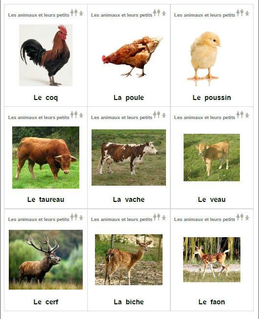 http://loupglace.canalblog.com/