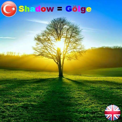 ||| #shadow = #gölge ||| °•●•° ||| #okunuşu = şadòv ||| °•●•° ||| #wordsenglish #englishwords #englishlearning #teacher #student #study #words #learning #translator #translate #dictionary #ceviri #cevirmen #sozluk #sozcuk #ingilizce #grammer #learn #teach #word #turkce #school  #phoenixdictionary |||