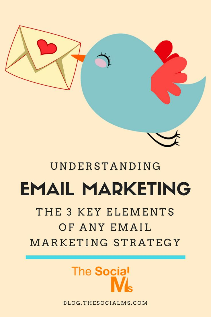 Understanding Email Marketing: The 3 Key Elements of Any Email Marketing Strategy - The Social Ms