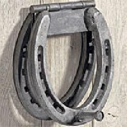 Horseshoe Door Knocker! Another pinned: wow this is really amazing a easy to do I did this already