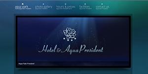 Aqua President Baile Felix www.aquapark-felix.ro