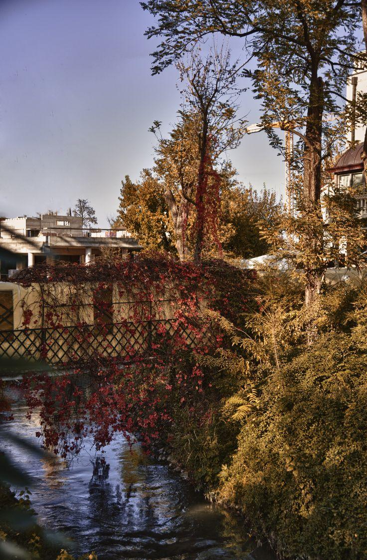 We love autumn!   www.termepreistoriche.it