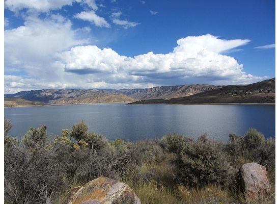 17 best images about fishing happiness on pinterest for Blue mesa reservoir fishing