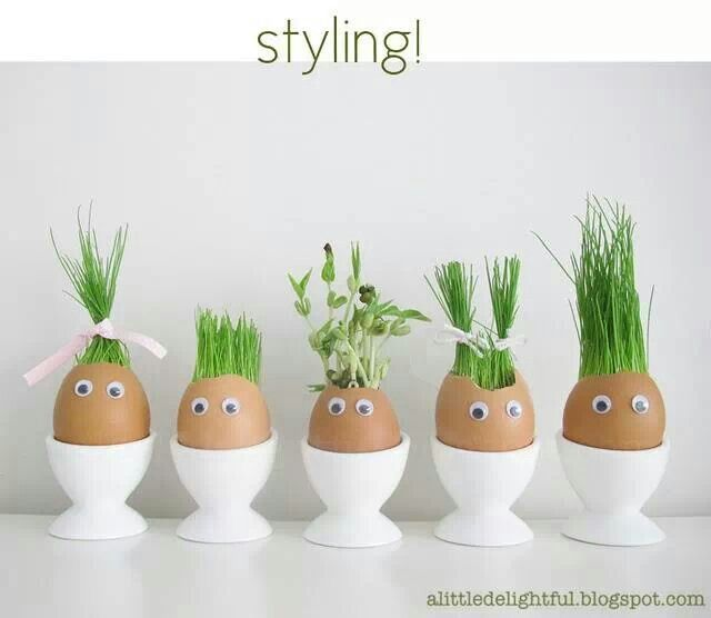 These eggs are so funny