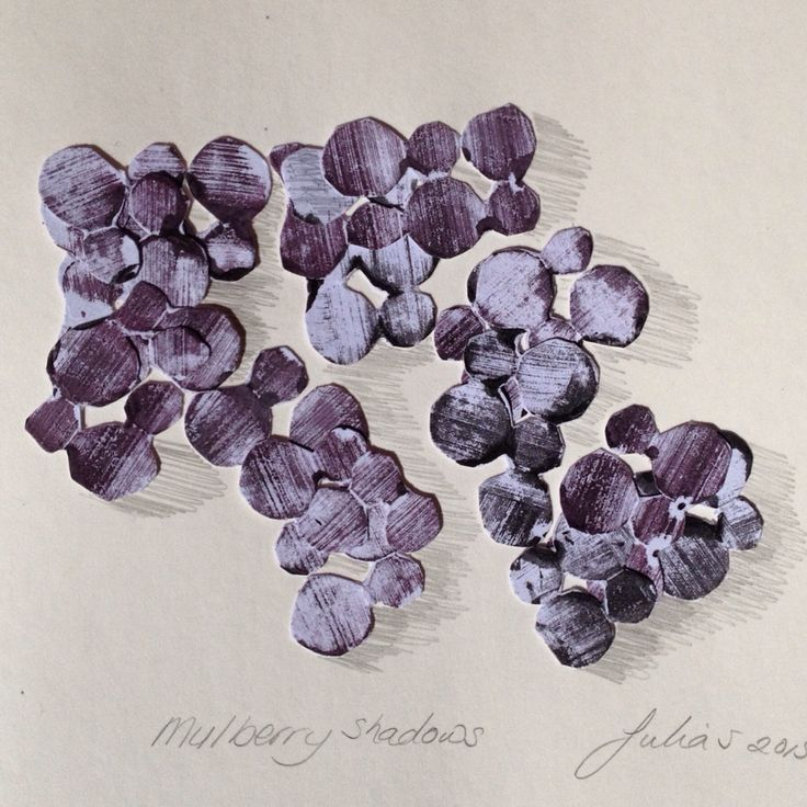 Mulberry shadow