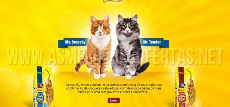 Tudo para Poupar e Ganhar!: Atenção Felinos | Amostra grátis Crunchy&Tender