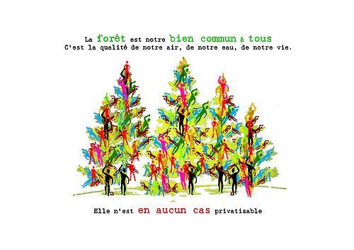 Morgane Bonaldi #ConcoursArtBoréal #DéfendonsLaForêt www.greenpeace.ca/artboreal