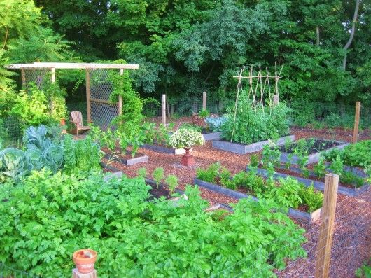 Vegetable garden with flowers and seating