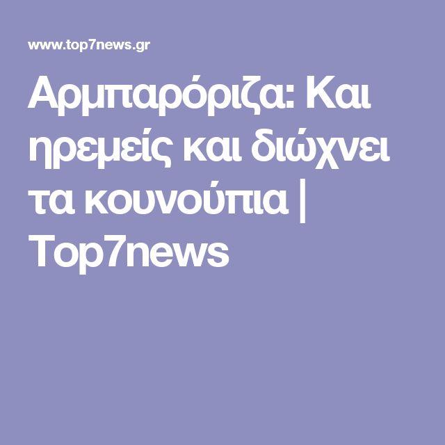 Αρμπαρόριζα: Και ηρεμείς και διώχνει τα κουνούπια | Top7news
