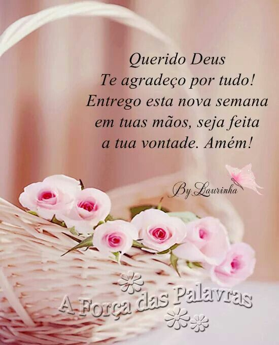 ✿⊱❥ Querido Deus, te agradeço por tudo! Entrego esta nova semana em tuas mãos, seja feita a tua vontade. Amém! _/I\_