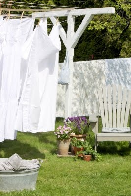 Clothesline Idea-Hopefully my hubby will make this for me this summer.  :)