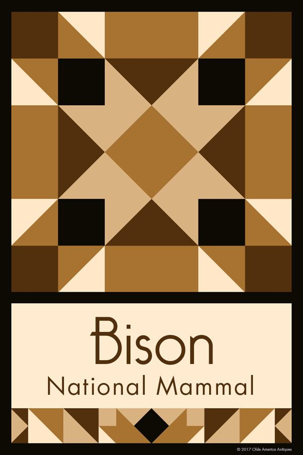BISON NATIONAL MAMMAL QUILT BLOCK - This quilt block is an original design by Susan Davis. Susan is the owner of Olde America Antiques and American Quilt Blocks. Visit her web sites to see more than 6,000 quilt blocks for sale.