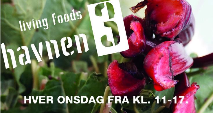 Kom og oplev living foods marked hver onsdag på havnen3 i Gilleleje kl. 11-17. Smag på lokale råvarer, vin og øl.