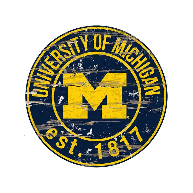 """Michigan Wolverines Distressed 24"""" x 24"""" Round Wall Art, Multicolor"""