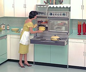 Mid Century Modern Vintage Frigidaire Oven Range | Old Appliances.