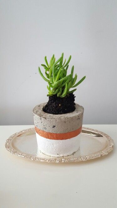 DIY concrete planter Learn how to make your own planters for less thab half the price