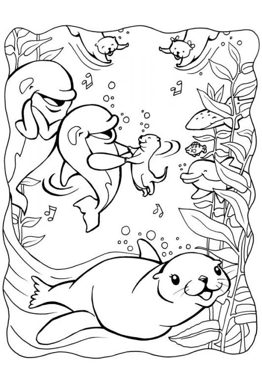 dolphin and otters coloring page