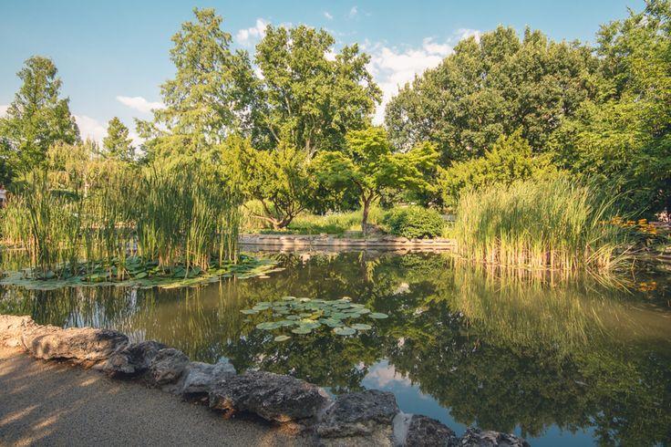 Margaret Island-Japanese Garden