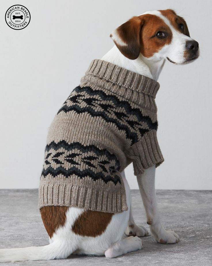 Introducing American Beagle Outfitters. Now, your dogs can match your #AEOSTYLE. American Beagle Outfitters Patterned Sweater Poncho