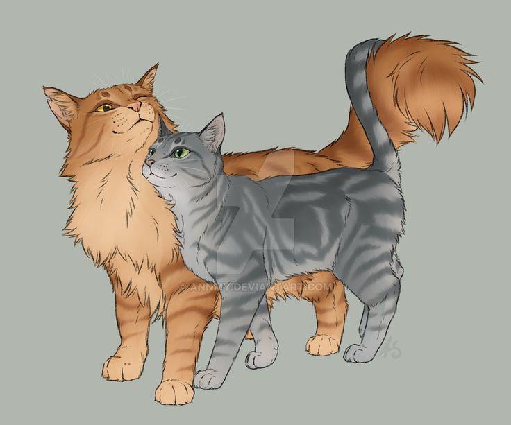 Коты воители картинки пары