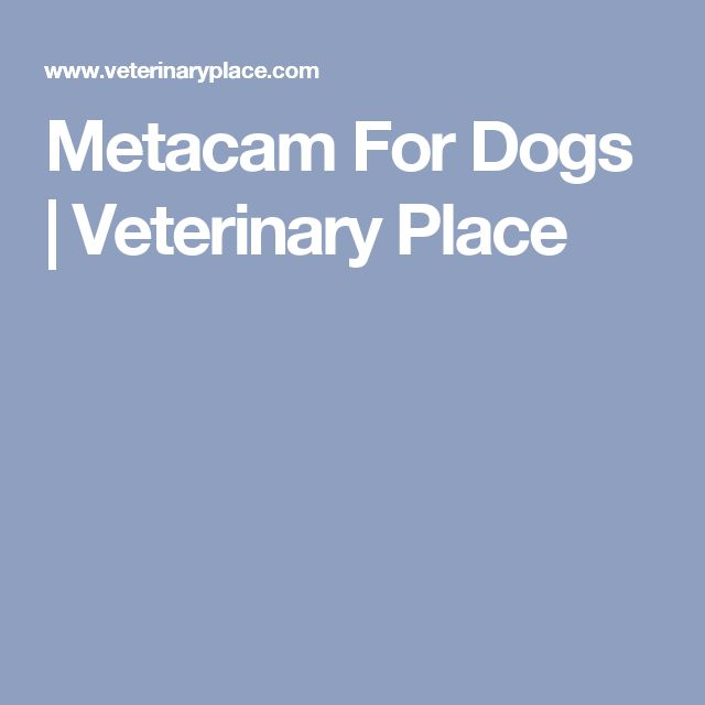 Metacam For Dogs | Veterinary Place