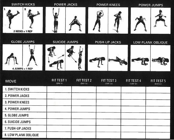 Insanity Fit Test Printable | INSANITY Fitness Test Day 2