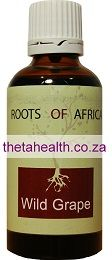 Wild Grape - Herbal Medicine for Menstruation