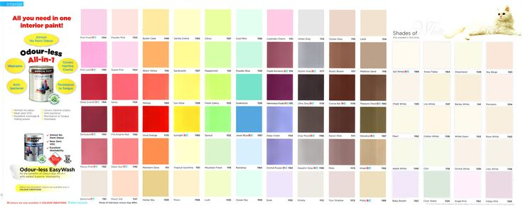 Kwal paint color chart wall painting odourless for Color charts for painting walls