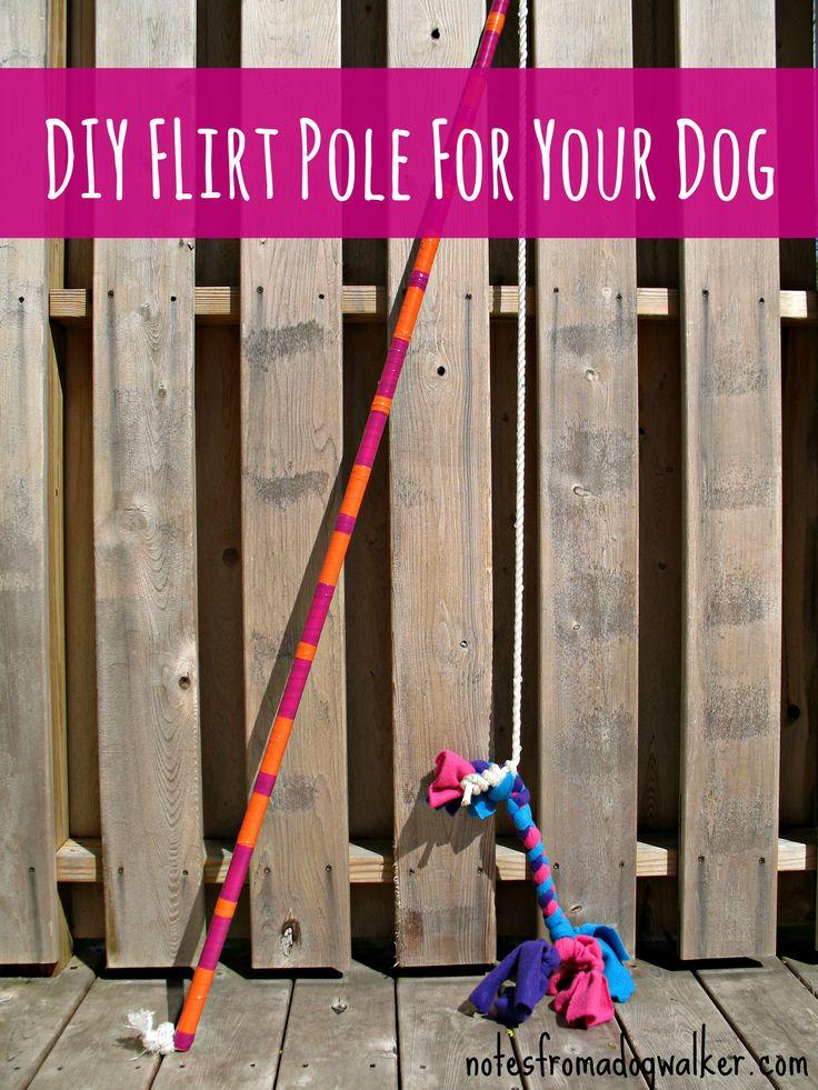 Dog Training Whip Uk