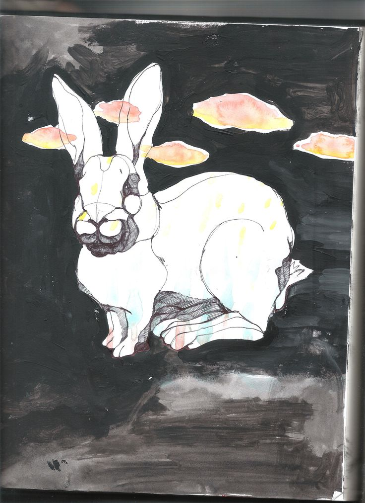 watercolor acrylic rabbit