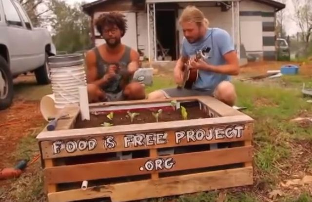 How to build a self-watering raised garden bed from scavenged materials : TreeHugger