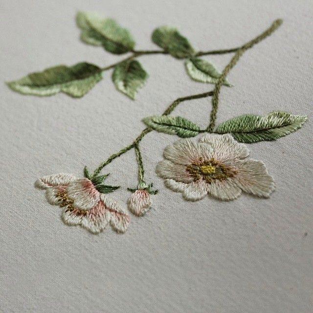 #야생화자수 #찔레꽃 #꿈소 #꿈을짓는바느질공작소 #자수 #embroidery #handembroidery #embroideryart #needlework #stitchart #dmc #wildflowers #babybrier #brier #handmade