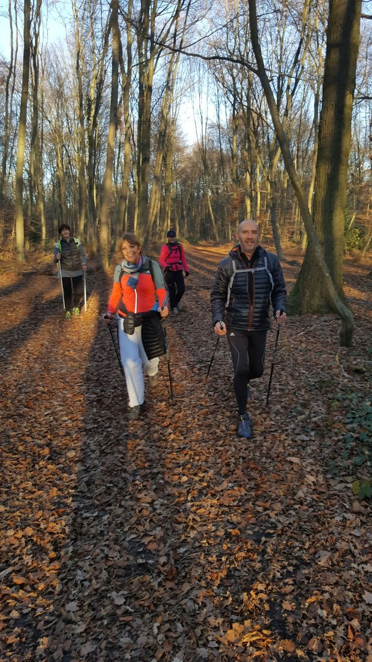 Marche Nordique & Fitness plein air / Marly-le-roi: Marche nordique technique et Marche nordique loisir