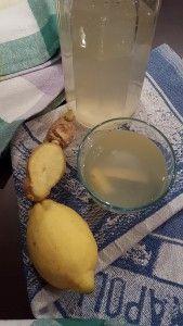 Tisana bruciagrassi zenzero e limone