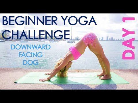 One Month Beginner Yoga Challenge: Amazing for all levels, I've enjoyed getting back to basics