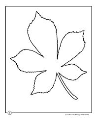 Image result for simple oak leaf outline