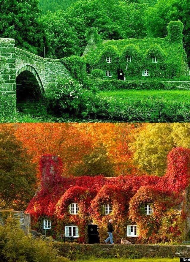 England  I wonder if these houses would be very damp in winter or warm??