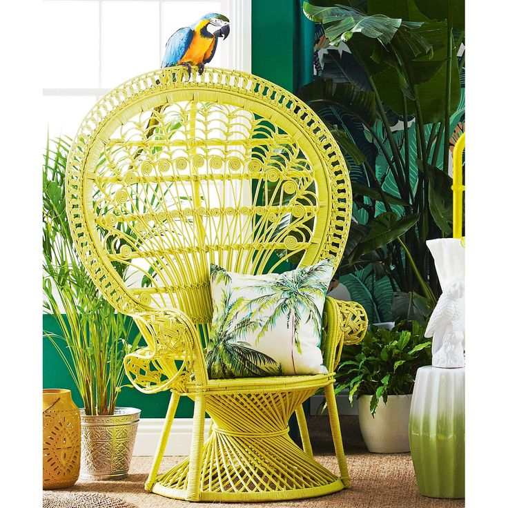 Peacock Chair | Domayne Online Store