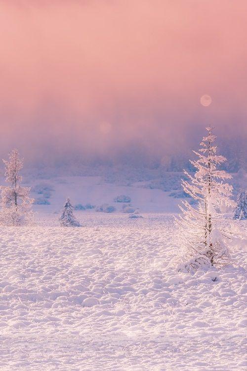 A Winter's Tale by Birgit Franik