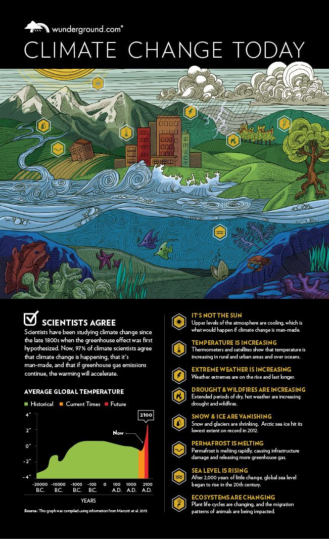 CAUSE; Infographic: Climate Change Today | Weather Underground. Information about the effects of climate change and what it is doing to our planet.