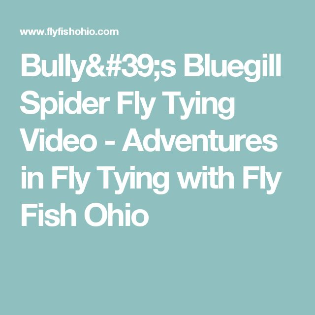 Bully's Bluegill Spider Fly Tying Video - Adventures in Fly Tying with Fly Fish Ohio