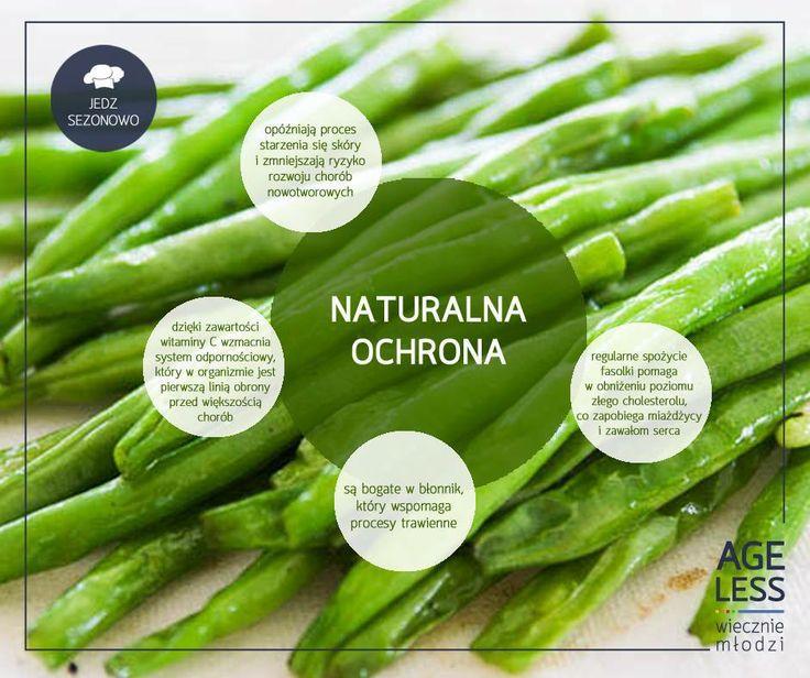 Fasolka szparagowa - bardzo popularne i smaczne warzywo strączkowe, które powinno często gościć w naszych kuchniach. Cieszmy się nim póki jest, tym bardziej, że jest wyjątkowo zdrowe! Więcej o fasolce szparagowej i znakomity sposób na jej przyrządzenie znajdziecie tutaj  - http://bit.ly/1khRDGJ :) #ageless #wieczniemlodzi #wiecznamlodosc #fasolka #warzywa #sezon www.ageless.pl