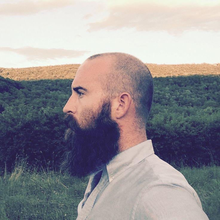 Astounding 17 Best Ideas About Beard Bald On Pinterest Bald With Beard Hairstyle Inspiration Daily Dogsangcom